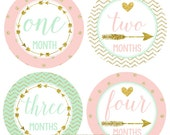 FREE GIFT, Baby Girl Monthly Stickers, Mint, Blush Pink, Month Arrow Stickers, Gold Dots Chevron Photo Prop, Tribal Arrows Nursery Decor