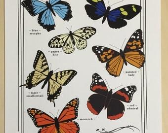 Art Print: Field Guide to Butterflies