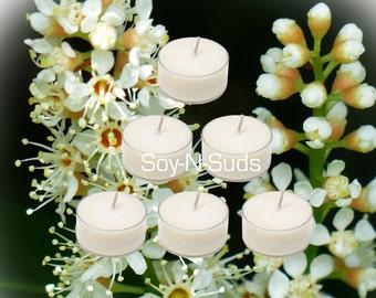 BAYBERRY Tea Light Soy Candles