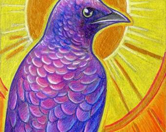 Birdazzling Starling - Original Mixed Media Painting