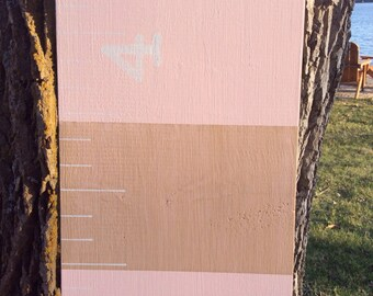 Pink and Metallic Gold Wooden Growth Chart