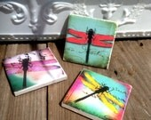 dragonfly Magnets- Set of (3)