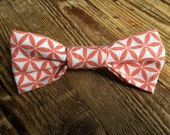 Coral Little Boy Bow Tie