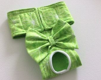 Female Dog Diaper - Dog Panty - Dog Britches - Bright Green with white Floral Shapes -  XXS - Small