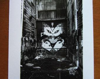 Graffiti Cat - Hand Printed Silver Gelatin Photograph