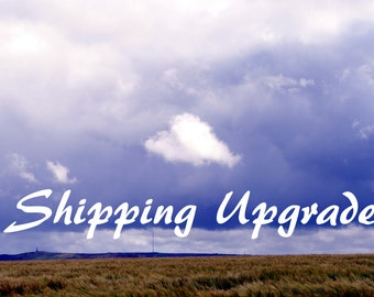 Shipping Upgrade Next Day Delivery UK