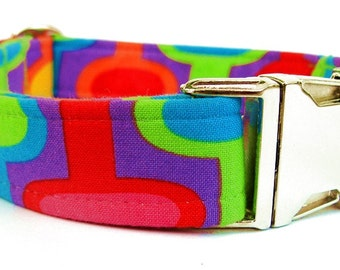 Colorful Dog Collar with Nickel Plate Hardware in Purple Lime Green Red Orange Yellow Teal Blue