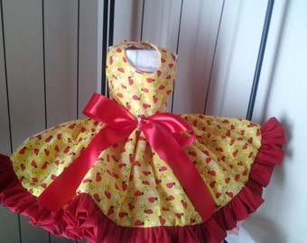 Adorable Little Miss Ladybug Doggie Dress-Sold Out!