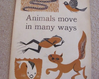 "Vintage Illustrated Large Flash Card Science Chart Poster -- 11"" x 14"" Animals"