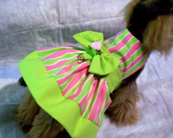 Yikes!  Stripes!  Pink and Green Stripe Dog Harness Dress