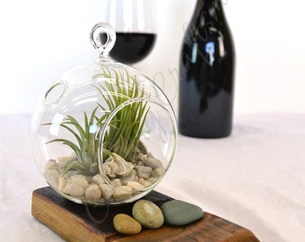 "TERRARIUM - ""Ingot"" - Hand Blown Glass Terrarium - 100% recycled Wine Barrels"