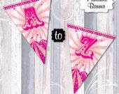 Pink Vintage Circus Banner