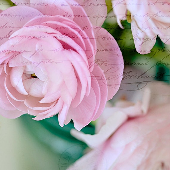 Pastel Flower Photograph, Art, Nature Photography, Print, Wall Art, Nursery, Pink, Spring, Flowers, Fine Art Print