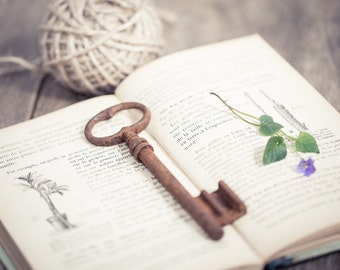 Vintage French Skeleton Key Big Huge Rusty Patina Antique Keys Steampunk Book Mixed Media Country Rustic Romantic Home