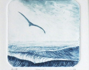 Original drypoint of a gull gliding over the ocean