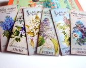 Bookmarks - French Flower Shop Perfume Essences Belle Jardin Lily Of The Valley Flowers Pansy Lilac Floral - Set Of 6 Small Paper Bookmarks