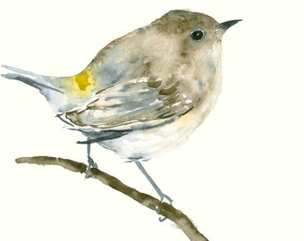 Bird Art Print from Original Watercolor Painting Little Brown Bird