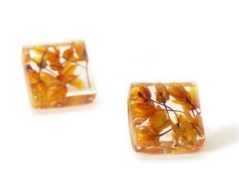 Orange Flower  Earrings- Real Flower Earrings- Flower Jewelry- Resin Jewelry- Post Earrings- Stud Earrings