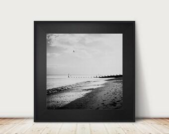 beach photograph black and white photography ocean photograph seaside photograph coastal print southwold photograph bird photograph