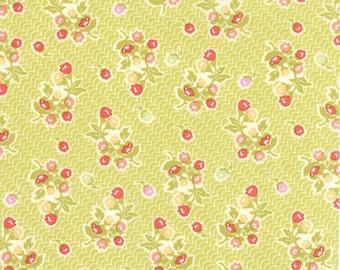 Aloha Girl Ohana Kiwi Fig Tree Quilts for moda fabrics