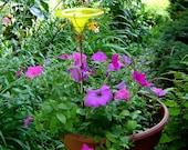 CONTAINER GARDENING, Butterfly Feeder, stained glass, YELLOW, copper, garden stake, Garden Art