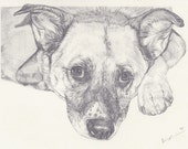 """Custom Portrait 6x8"""" - Sketch From Your Photo - Two Portraits or Pets"""