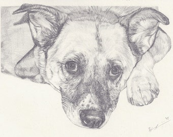 """Custom Pet Portrait 6x8"""" - Drawing From Your Photo - Single Subject - Pet Drawing"""