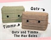 Oaty & Timmy the Hay Bales Plush Set - Flat Bonnie's BFFs - cute stuffed hay plushie characters