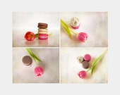Pink Tulip and Macarons, Food photogrpahy, Three macarons, Pink and Beige, Set of 4, Sweet spring, Kitchen art, Still life