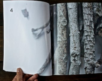 Zine: a Photography Artist's Book about Witches and Violence Against Women
