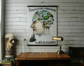 Phrenology Chart / Vintage Pull Down Reproduction / Canvas Fabric or Paper Print / Oak Wood Hanger with Brass Hardware / Organic Finish