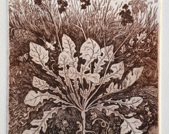 Limited edition etching 'From the Earth'