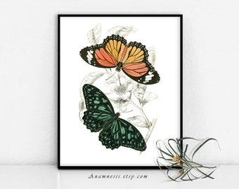 BUTTERFLY COLLAGE 2 - digital image download - printable 1800's illustration retooled for image transfer - totes, pillows, prints