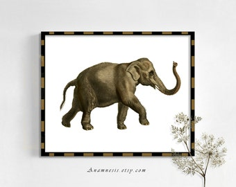 ELEPHANT 3 - digital image download - printable antique illustration retooled for image transfer - totes, pillows, prints, fabric, tags