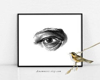 EYE - digital download - printable antique human eye illustration retooled by Anamnesis - image transfer - totes, pillows, prints, clothes