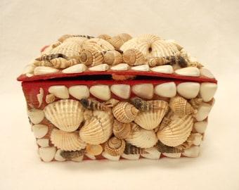French Collectible Vintage Seashell Souvenir Trinket / Jewelry Box (B110)