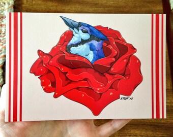 Bluejay in a Flower