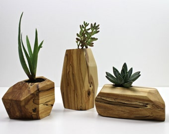Small Modern Faceted Succelent Planter in Spalted Alaskan Birch