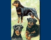 ROTTWEILER - Deck of Playing Cards
