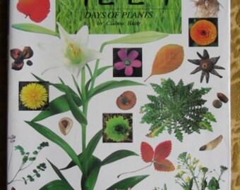 Japanese Plant Book - Days of Plants by Ciabou Hany, 1993, Korean Translation Version