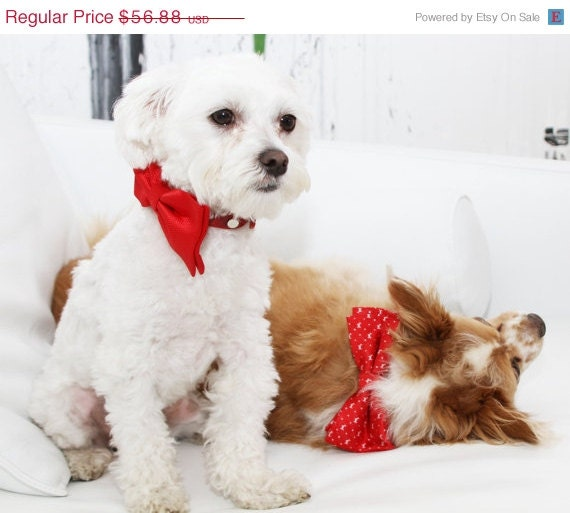 Christmas Gift Red Dog Bow Tie Cute Unique Christmas By