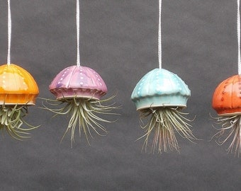 Small Jellyfish, Hanging Planter, Airplant, Air PlanterWhimsical Gift