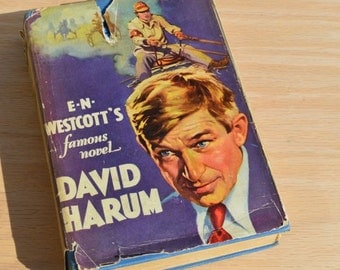 David Hurum A Story of American Life by E N Westcott 1926 Vintage Photoplay book with dust jacket