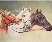 "Three Horses, ""In All Their Glory"" Restored Antique Horse Print, Horses of Three Colors, Affordable Wall Art  #136"