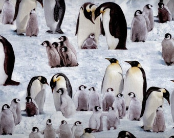 Snow Penguins fabric photo realistic penguins chicks in antarctica - Elizabeth Studios - by the YARD