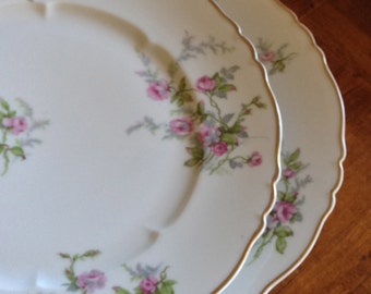 "Haviland Limoges ""Sylvia-White"" Set of Two Dinner Plates"
