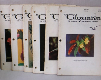 Complete Run 1978 Issues Gloxinian Magazine for Gesneriad Growers / African Violets Gloxinias Kohlerias / Houseplant Magazine