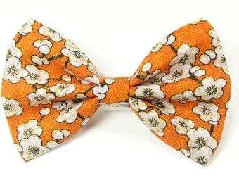 Orange floral dog bow tie & cat bow tie