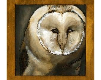 Barn Owl Print, Giclee Art Print, Owl Art, Forest Wall Art, thepaintedgrove