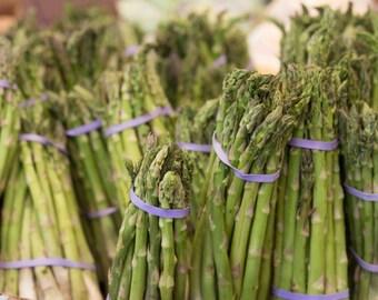Kitchen Art, Photo Art or Photo Print - Green Asparagus with Purple Bands, Restaurant Photos, Kitchen Photos, Food Photos, Vegetables